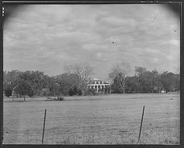 [Sevenoaks Plantation, From Across Field and Behind Wire Fence, Jefferson Parish, Louisiana]