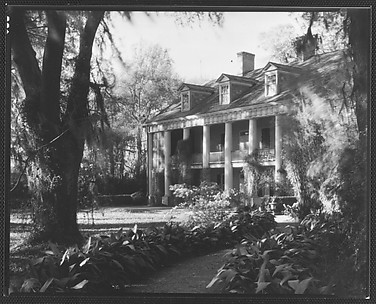 [Brick Greek Revival House with Ivy on Columns, Residence of Weeks Hall, New Iberia, Louisiana]