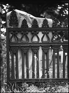 [Cast-Iron Fence Detail, New Orleans, Louisiana]