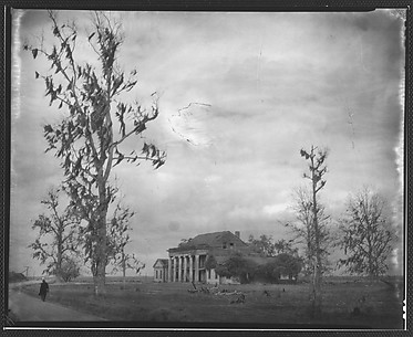 [Oblique View of Plantation House, From Road with Oak Tree in Foreground]