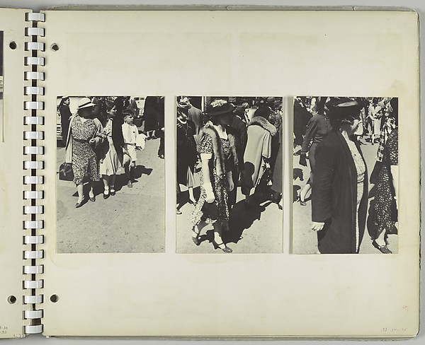 [Pedestrians, New York City: Woman Wearing Hat and Fur Stole in Foreground]