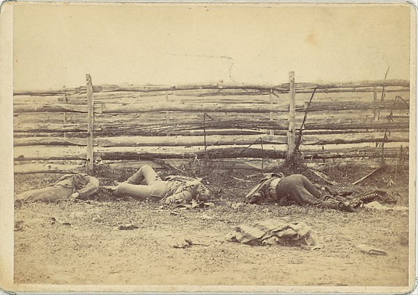 View in the Field, On the West Side of the Hagerstown Road, After the Battle of Antietam, Maryland, September 1862