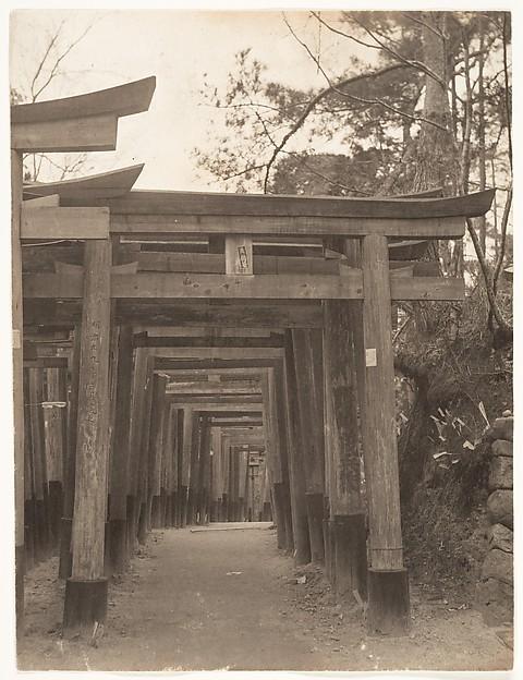 [Row of Torii Gates at Unidentified Shinto Shrine]