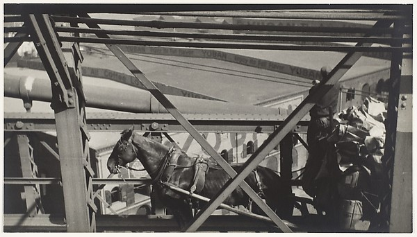 [Horse-Drawn Wagon on Brooklyn Bridge]