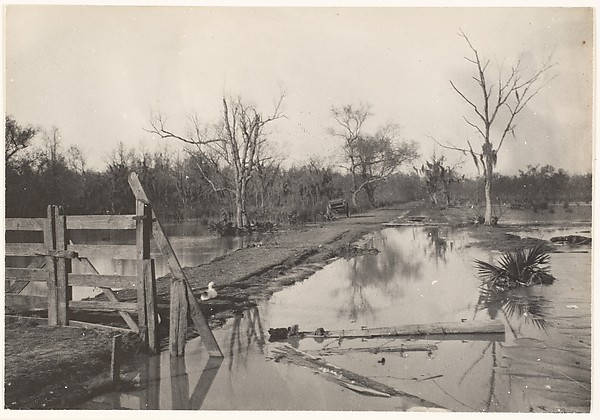 [Road Through Flooded Land]