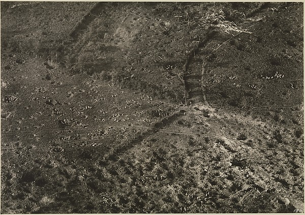 [Battlefield at Vaux, France]