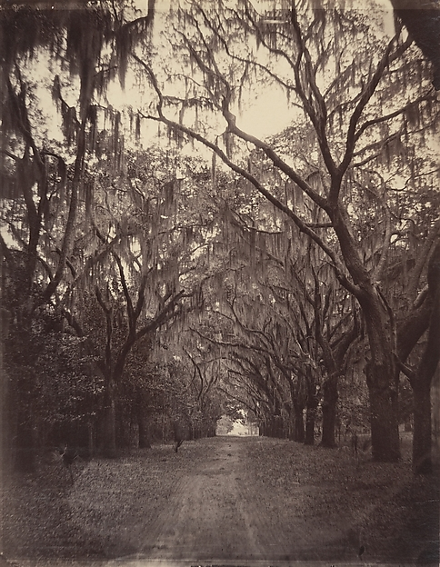 Bonaventure Cemetery, Four Miles from Savannah