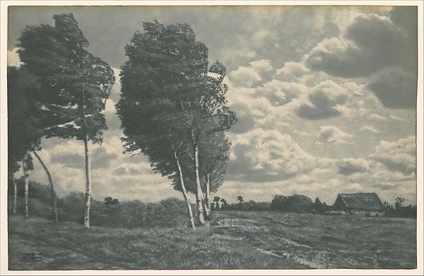 Landscape - Windy Weather