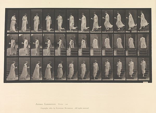Animal Locomotion.  An Electro-Photographic Investigation... of Animal Movements.  Commenced 1872 - Completed 1885.  Volume VI, Woman (Semi-Nude and Transparent Drapery) Children