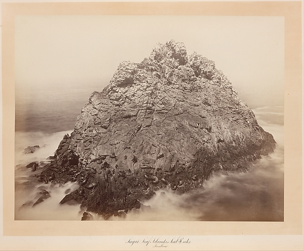 Sugar Loaf Islands, Farallons