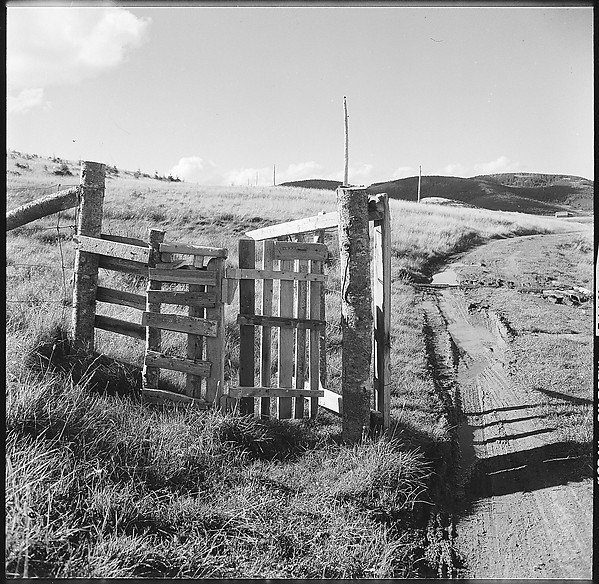 [36 Views of Fence and Path Leading to Robert Frank's House, Nova Scotia]
