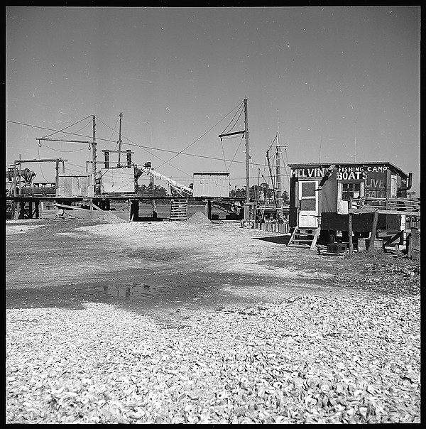 [16 Views of Fishing Shack, Biloxi, Mississippi]