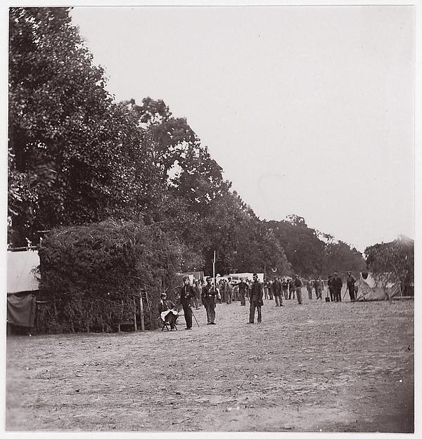 [Encampment alongside a stand of trees].  Brady album, p. 123