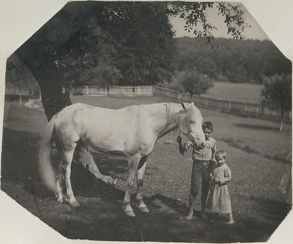 [Thomas Eakins's Horse Billy and Two Crowell Children at Avondale, Pennsylvania]