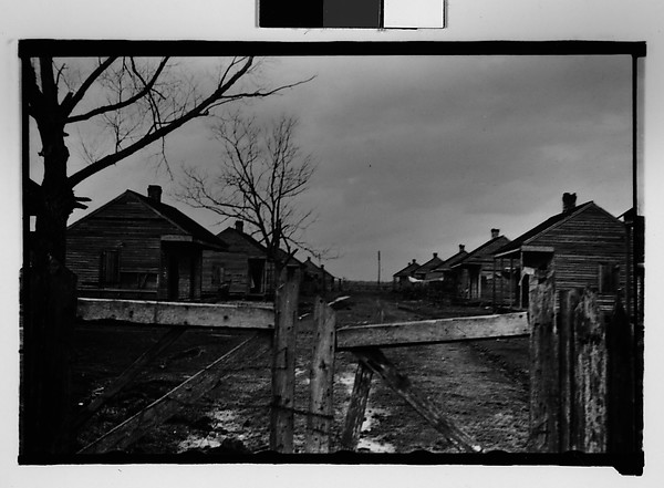 [Two Rows of Wooden Houses Behind Gate, New Orleans Vicinity, Louisiana]