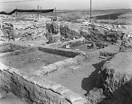 Hebrew University of Jerusalem, Hatzor Excavation. Shore Negative #38
