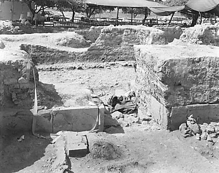 Hebrew University of Jerusalem, Hatzor Excavation. Shore Negative #86