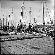 [Sponge Wharf at Tarpon Springs, Florida]