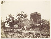 [Vegetable Garden and Ivy Covered Tower]