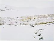 Snow on Sand Dunes, Colorado
