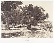 Jérusalem, Champ du sang