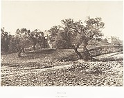 Jérusalem, Porte d'Hérode