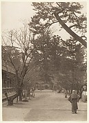 [Garden Scene with Young Man Working]