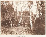 Cureuleo Meadow
