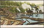 Logging Scene and Mill, Ore.