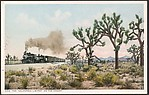 """The """"California Limited"""" on the Desert"""