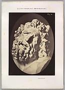 Figure 70: Head of the Laocoön of Rome