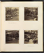[View in Tropical Department; View of Egyptian Sphinxes]