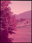 """[Six Views of a Golf Course, for Fortune Article """"October's Game""""]"""
