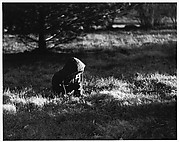 [Boy Wearing Hooded Jacket, Seated in Grass]