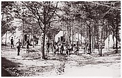 Convalescent Camp near Alexandria