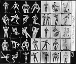 [Advertising Contact Sheet of Male Models in Various Poses]