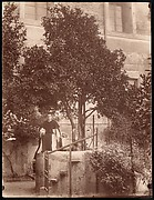 [St. Domenic's Orange Tree on the Aventine]