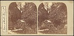[Group of 3 Stereograph Views of Shanklin Chine, Isle of Wight, England]