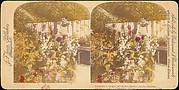[Pair of Stereograph Views of the Royal Botanic Gardens, Kew Gardens, London, England]