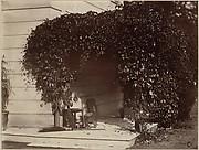 American Creeper, Blake House