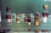 [Pasteur Museum, Paris]