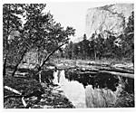 Cottonwood Bend - Valley of the Yosemite