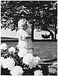 [Small Girl in Park Holding Flower; Nanny and Pram in Background]