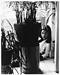 [Young Girl Behind Potted Palm]