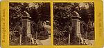 [22 Stereographic Views of Johann C. F. von Schiller Monument, Central Park, New York]