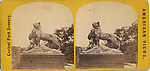 [21 Stereographic Views of Lioness and Cubs Statue, Central Park, New York]
