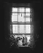 [Crystal Ball and Ferns on Window Ledge, West Cedar Street, Boston, Massachusetts]