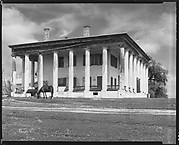 [Greenwood Plantation House with Horses Grazing, Louisiana]