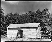 [Cabin with Corrugated Tin Roof and Weeds Around Doorway, Hale County, Alabama]