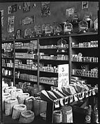 [Seed Store Interior, Vicksburg, Mississippi]